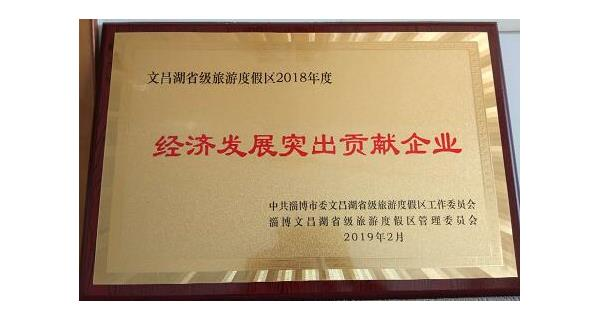 Zibo Fengyan Electronic Components Co., Ltd. won the 2018 Wenchang Lake District Outstanding Contrib